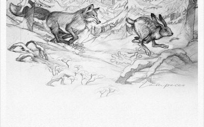 THE HARE RACE